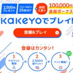 KaKeYo(カケヨ)スポーツベッティング&オンラインカジノ|徹底解説